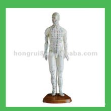 "Chinese Human Acupuncture Model ,18"" Man Body Model"