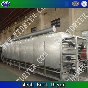 Multi Level Chamber Dryer Belt