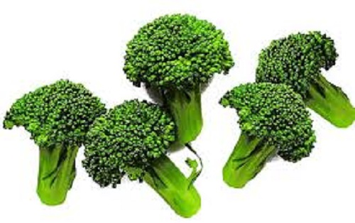 Nutritional Value of Frozen Broccoli