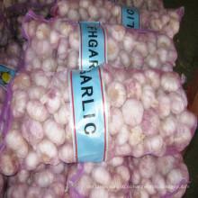 2016 новый урожай свежий чеснок с рыночной ценой в Китае