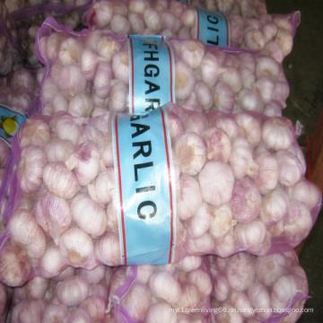 2016 Zuschneiden neuer frischen Knoblauch mit Marktpreis in China