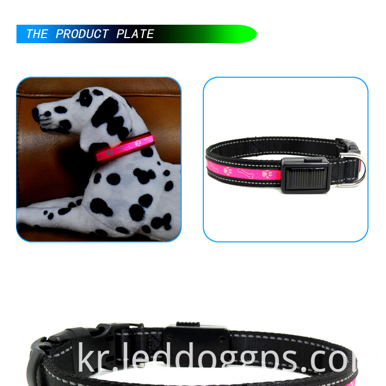 Light Pink Dog Collar