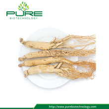High Quality Panax Ginseng /Ren Shen /lower price
