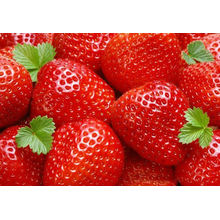 nuevo cultivo IQF a granel fresas enteras