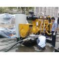 350kVA Erdgas CUMMINS Engine Powered Generator Set