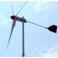 Petites éoliennes Turbines(300W), petite éolienne