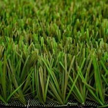Natural Landscape Grass for Garden