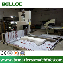 Two Sheel Vertical Foam Cutting Machine