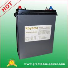 Batterie européenne de cycle profond de 310ah 6V pour