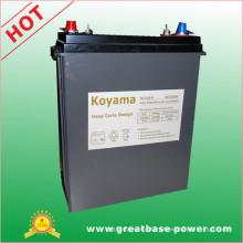 European 310ah 6V Deep Cycle Battery for