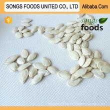 Comprar semillas de calabaza, semillas de calabaza Shineskin