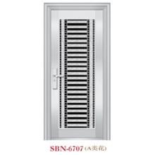 Puerta de acero inoxidable para exteriores (SBN-6707)