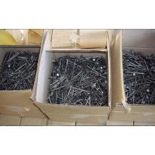 Clavos de hormigón galvanizado de bajo precio para la construcción