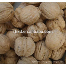 wholesale prices of walnuts unshelled