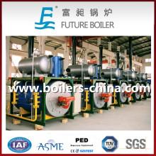 Calentador de aceite térmico de fluido diesel