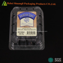 Clamshell-Kunststoff Heidelbeere-Boxen