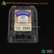 Caixas de plástico mirtilo garra