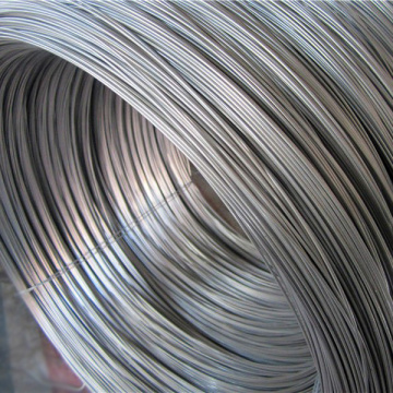 Q235 Steel Wire Rod di koil