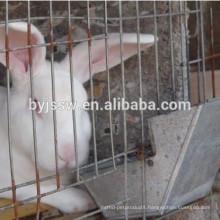 Rabbit Metal Feeder ( 8cm, 10cm, 12cm)