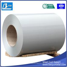Hoja de acero Prepainted de alta calidad para Buliding