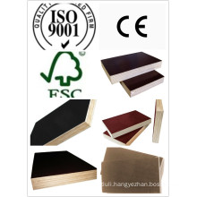 Huabao Top Quality Film Faced Plywood/Marine Plywood