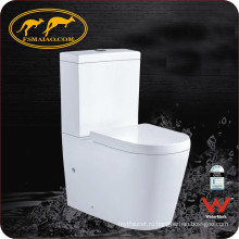 Watermark поставщика Washdown двух частей керамический туалет (6010)