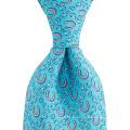 Horseshoe Motif Custom Print Men Perfect Knot Private Label Silk Ties