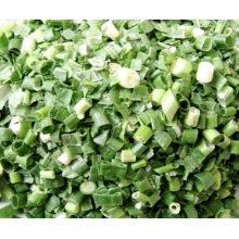 Scallion verde congelado-secado; Scallion verde desidratado; Fd Scallion