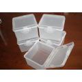 2 Cavity Preservation Box Mould
