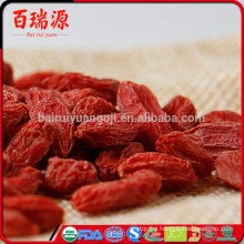Where can you buy goji berries wolfberry fruit where can i find goji berries