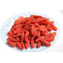 2018 New Crop Natural Sun Goji suszone