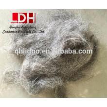 Cheveux de chèvre gris chinois