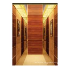Fjzy-Elevator (FJ8000-1) Elevator Passenger Fjzy-199