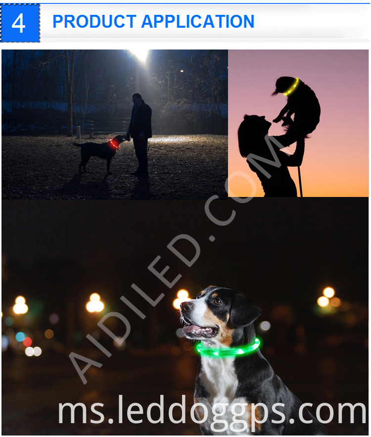 Waterproof Glow Dog Collar