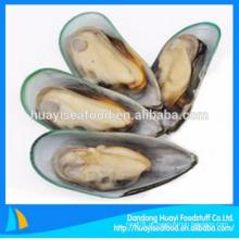 Novo congelado alta qualidade amplo mexilhão shell metade