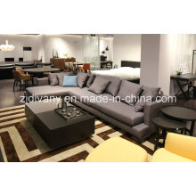 Modern Style Living Room Fabric Sofa Furniture (D-75)