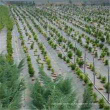 Озеленение & настил типа и материала ткани сорняков ткани управления