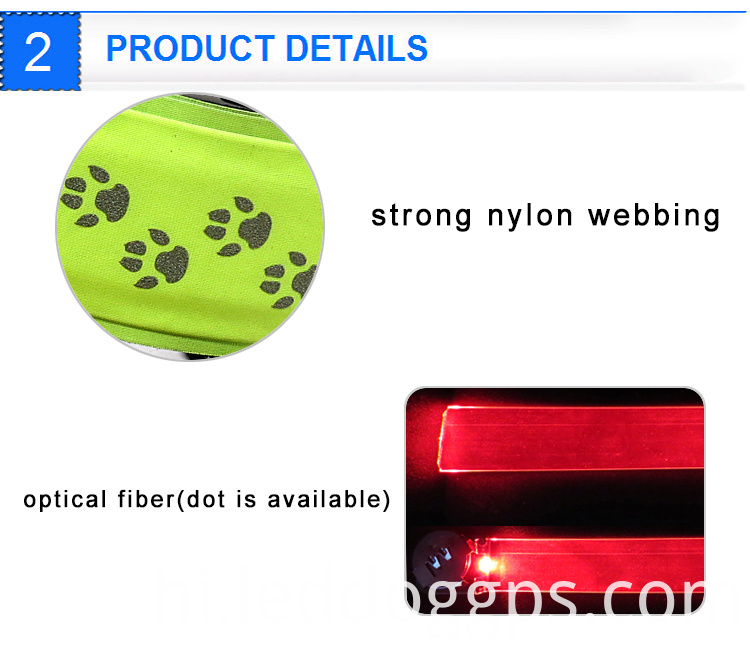 Blinking Dog Collar Lights
