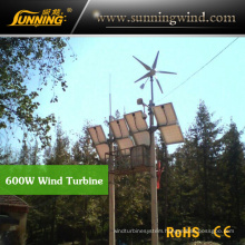 Residential Wind Generator 600W Small Wind Turbine Motor Home Use