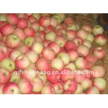 Gala-Apfel, 138/150/163/175
