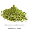 Wholesale poudre de wasabi vert avec halal kasher
