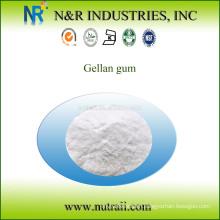 low acyl gellan gum powder food grade