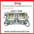 Plastic Injection Manufacture / Zwei Cavity Crate Mould