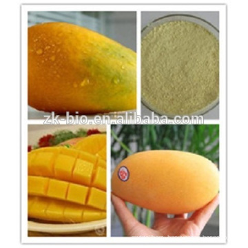 Supply Best Price Mango extract Mangiferin