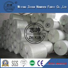 Tissu non tissé blanc d'agriculture de pp de polypropylène