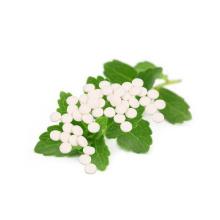 Le meilleur comprimé de sucre vert de mélanges de poudre de Stevia pour des additifs alimentaires