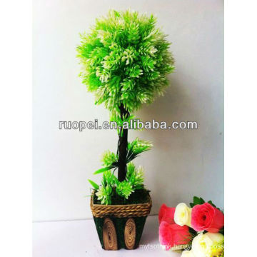 grass ball tree boxwood topiary leaf tree