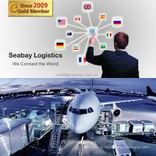 Serviço profissional de carga aérea da China para todo o mundo
