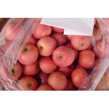 Новая обрезка свежего яблока Qixia Apple