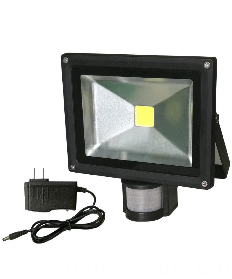 body induction flood light